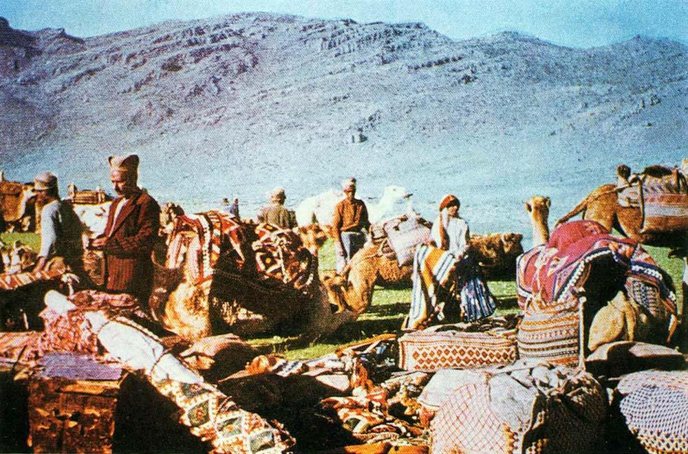 Karabagh Develi Shadda Camel Caravan rug